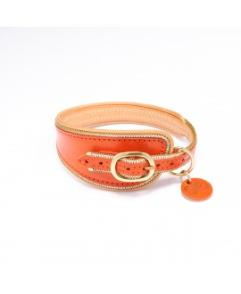 Famous Dog Collar (small sizes)