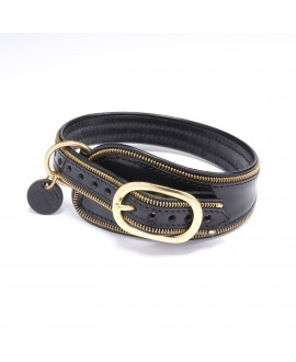 Famous Dog Collar (médium sizes)
