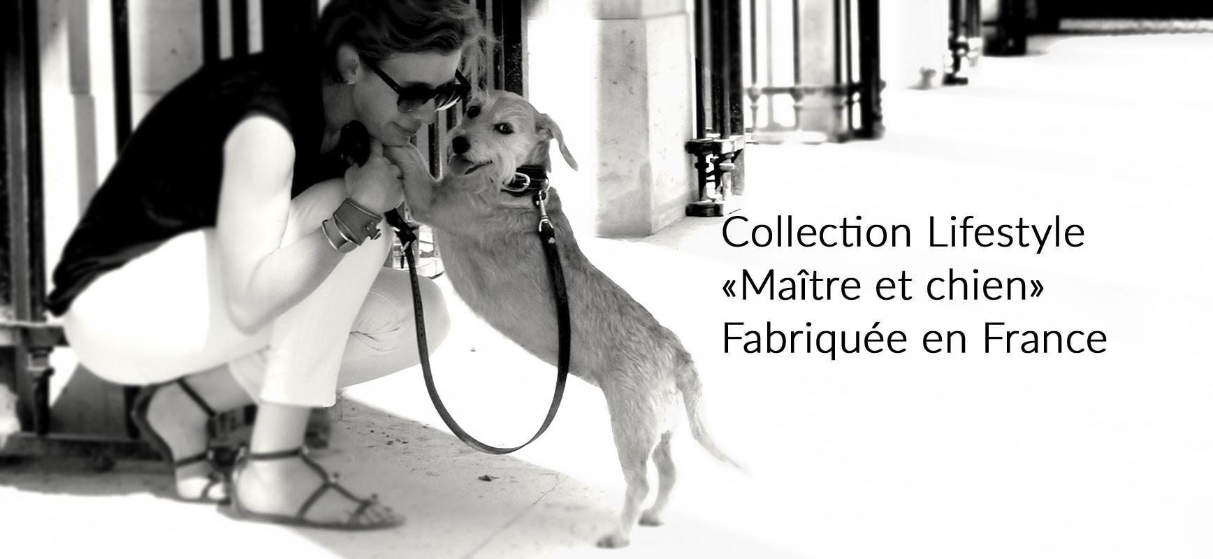 slider produits maîtres et chien